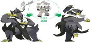 《寶可夢 劍/盾》武道熊師